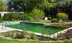 Pool- und Teichbau